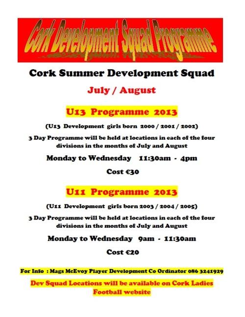 2013 Development Programme