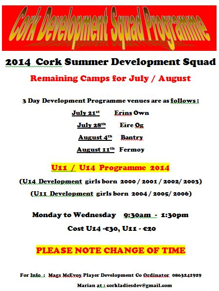 Summer Development Squad Flyer 2